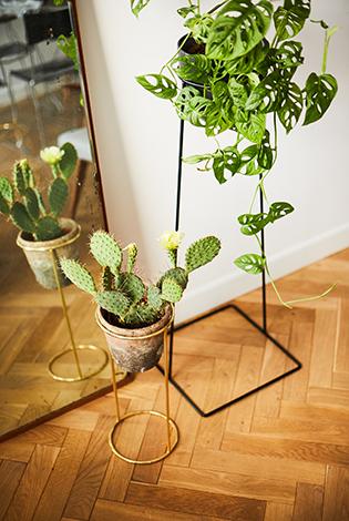 kwietnik, stojak złoty, złoty kwietnik, minimalistyczny kwietnik, złota podstawka pod rośliny, kwietnik z prętów, kwietnik jak prl