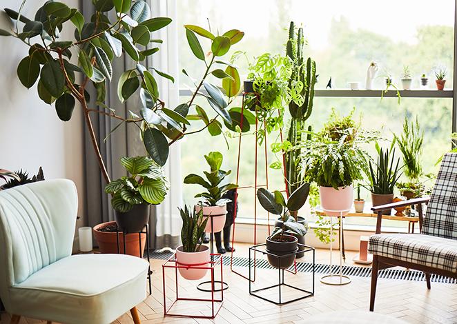 metalowy kwietnik, kwietniki do biura, kwietnik do salonu, kolorowe kwietniki, kwietniki z drutu
