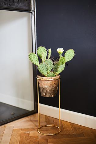 kwietnik na kaktus, stojak pod kaktus, elegancki stojak, elegancka podstawka, złoty dodatek do sypialni