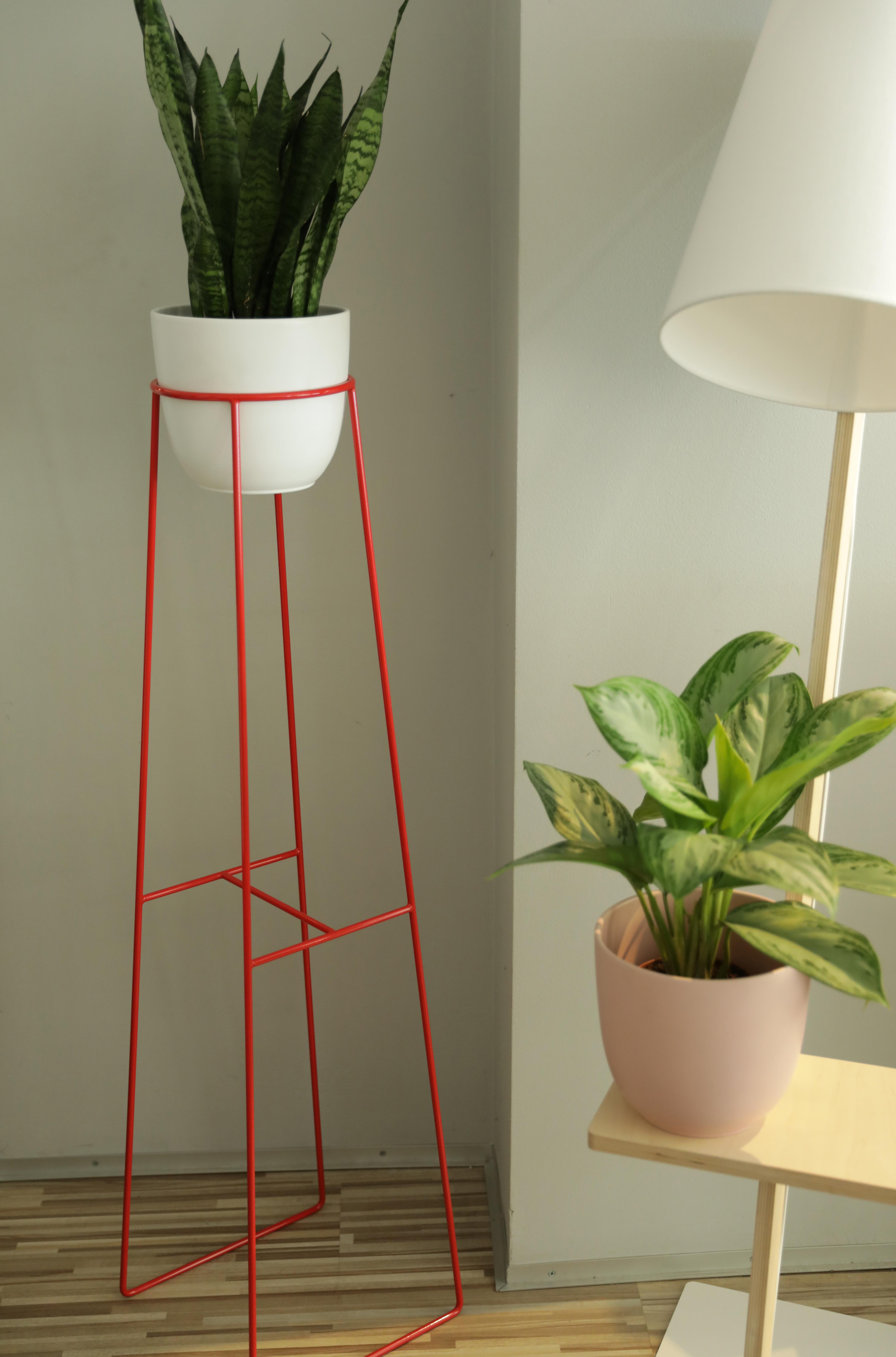 wysoki kwietnik, czerwony dodatek do salonu, czerwony element, kolorowy akcent w mieszkaniu