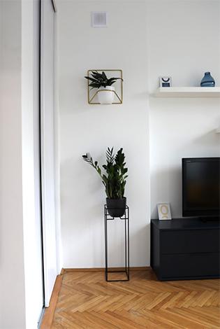 kwietnik na ścianę, kwietnik jak vintage, kwietnik w kolorze złotym, kwietnik na wkręty, kwietnik nad łóżko, kwietnik nad kanapę