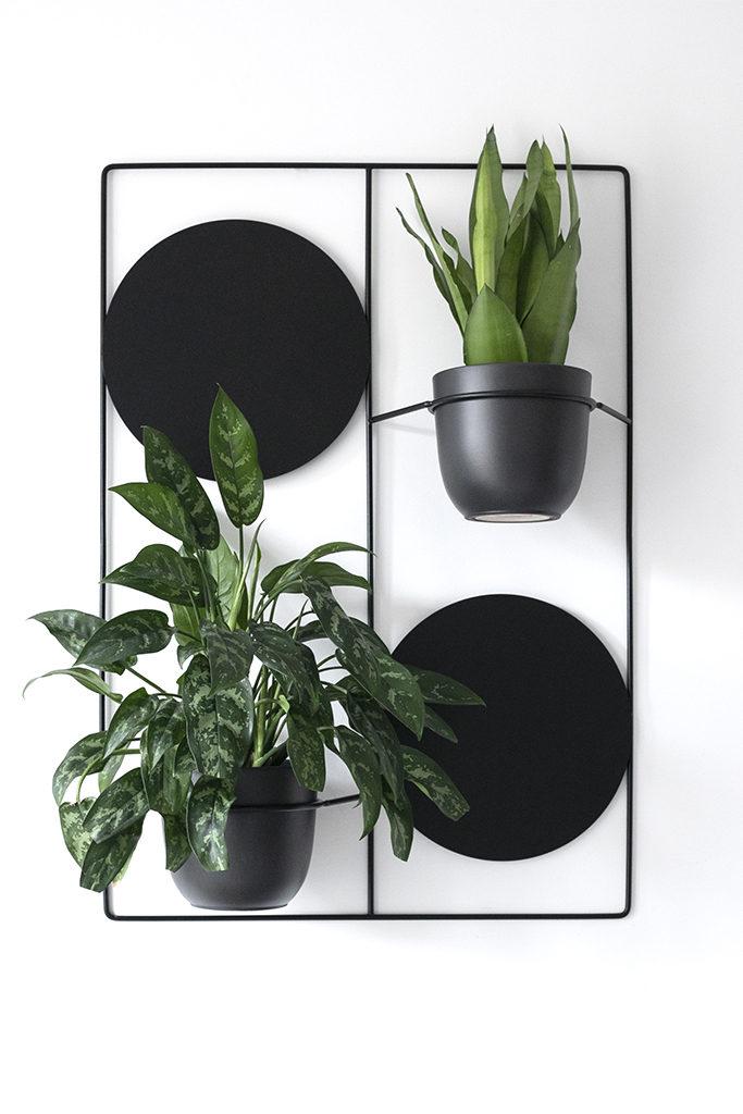 kwietnik na ścianę, kwietnik ścienny, do roślin na ścianę, duży kwietnik, do powieszenia roślin