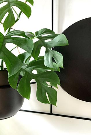 metalowy kwietnik, kwietnik na ścianę, stojak do powiszenia, kwietnik na dwie rośliny, metalowa ozdoba na ścianę