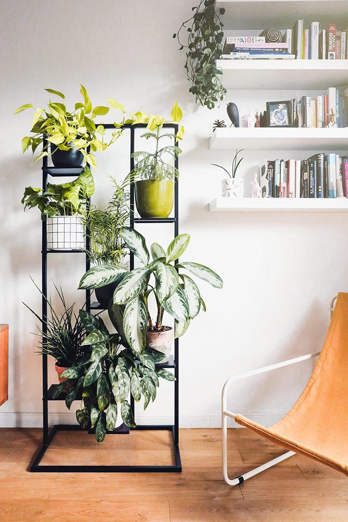 kwietnik na dużo roślin, kwietnik na dużo kwiatów, stojak na rośliny, ścianka na rośliny, zielona ścianka