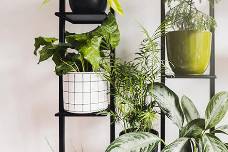 regał na rośliny, półka na rośliny, mały regał, pojemny regał, regał do sypialni